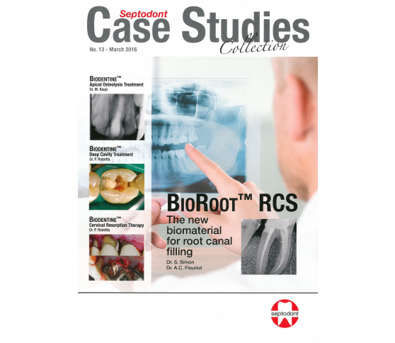 Case Studies Collection N°13